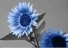Sunflower, Grafikdruck East Urban Home Größe: