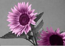 Sunflower, Grafikdruck East Urban Home Größe: 50