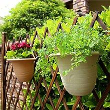 Sungmor Garten 2PC PACK Wandbehang Pflanzer,