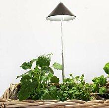 Sunlite Pflanzenlampe, 7 W, 28-100 cm, Ø 11,