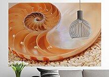 Sunny Decor - Fototapete NAUTILUS - 184 x 127 cm -