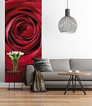 Sunny Decor - Fototapete RED ROSE - 92 x 220 cm -