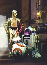 Sunny Decor - Star Wars - Fototapete THREE DROIDS