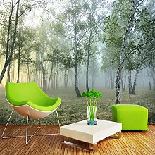 SUNNYBZ Xxl Wandtattoo Nebel Große Bäume Gras