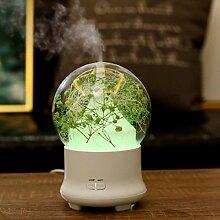 sunnymi LED Lampe Luftbefeuchter + Aroma + Ewige Blume + Aromatherapie-Maschine/Baby Mini Home Auto/ mit 7 Farben/ Luftdiffusor Luftreiniger Zerstäuber/für Babies Yoga Salon Spa Wohn, Schlaf, Bade- oder Kinderzimmer Hotel (grün)