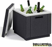 SunTime Allibert Ice Cube Kühler Ice Box
