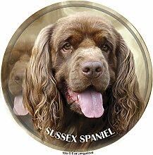Sussex Spaniel Aufkleber 25 cm