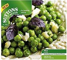 Suttons Seeds Lincoln Samen Erbse