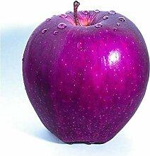 SVI Frische 20 PCS Apfelbaum Bio Fruchtsamen für