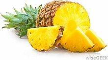 SwansGreen 4: 100 Stück/Beutel Multi-Color Rare Ananas Samen Fruchtsamen für Garten Balkon Bonsai Pflanze