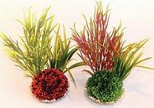 Sydeco Aquariumpflanze natürlichen Pflanzen (Aquarium/Fisch Tank Decor)–Insel Pflanze » 22cm
