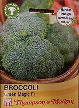 T&M Broccoli Green Magic F1 Hybrid (ca. 35 Samen