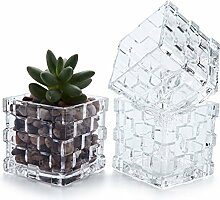 T4U 8cm Eckig Glas Blumentopf Würfel Vase