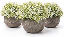 T4U Künstliche Blumen Bonsai Kunstpflanze mit
