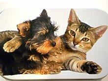 Tabak-Blechdose (28,35° g, Süße Katze und Hund