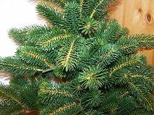 Tannenbaum, Weihnachtsbaum Deluxe 60cm