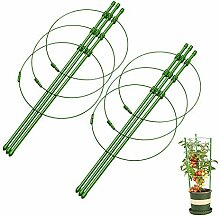 Tanwenling33 Set von 2 Garten Pflanze
