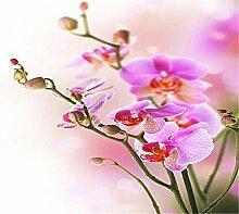 Tapete 3D Fototapete Schmetterlingsblume Tapeten