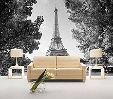 Tapete 3D Fototapete Schwarzweiss-Paris-Turm