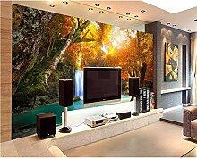 Tapete 3D Hd Rotahorn Wald Natur Foto Wohnzimmer