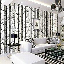 Tapete Birke, Birch Forest Wallpaper Fototapete