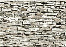 Tapete Die Mauer 254 cm L x 366 cm B Brayden Studio