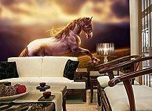 Tapete Fototapete 3D Effekt Europäer Weiß Pferd