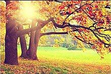 Tapete Fototapete 3D Effekt Herbstgrünes Land mit