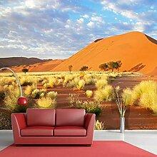 Tapete für Wohnzimmer Wandbild Tapete Papel De
