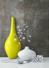 Tapete Metalloptik in Grau , schöne moderne Tapete für Ihr Wohnzimmer , inklusive der Newroom Tapezier Profibroschüre mit Tipps für perfekte Wände
