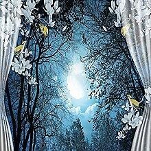 Tapete Natürliche Landschaft Friedliche Nacht