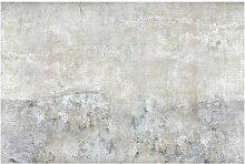 Tapete Shabby Betonoptik 2.9m L x 432cm B East