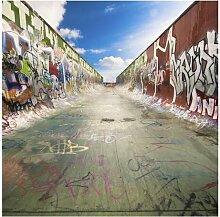 Tapete Skate Graffiti 1.92m x 192cm Kessinger