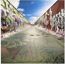 Tapete Skate Graffiti 2.4m x 240cm Lambdin Brayden