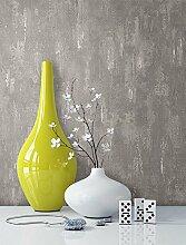 Tapete Stein Vliestapete in Beige Grau , schöne edle Tapete im Putzoptik Design , moderne 3D Optik für Wohnzimmer, Schlafzimmer oder Küche inkl. Newroom Tapezier Ratgeber mit Tipps für perfekte Wände