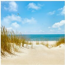 Tapete Strand an der Nordsee 240 cm L x 240 cm B