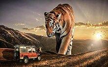 Tapete Tier Tiger Wald 3D Wandbilder Für