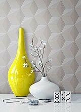 Tapete Vlies Grau Beige Grafik Optik | schöne, edle Tapete im modernen Design | für Wohnzimmer, Schlafzimmer oder Küche inklusive Newroom Tapezier Profibroschüre mit Tipps für perfekte Wände