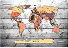 Tapete Weltkarte 1,4 m x 200 cm