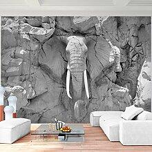 Tapeten Fototapeten Elefant Afrika - Vlies Wand