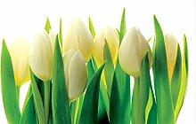 Tapeto Fototapete - Blumen Tulpen Natur - Papier