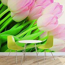 Tapeto Fototapete - Blumen Tulpen Natur - Vlies