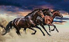 Tapeto Fototapete - Pferde Wild - Vlies 312 x 219