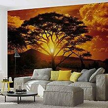 Tapeto Fototapete - Sonnenuntergang Afrika