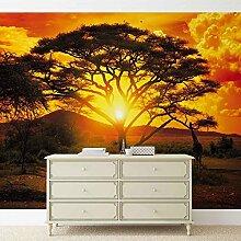 Tapeto Fototapete - Sonnenuntergang Afrika Natur