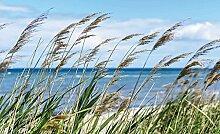 Tapeto Fototapete - Strand See Sand Natur - Vlies