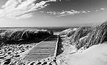 Tapeto Fototapete - Weg Strand Natur - Papier 184