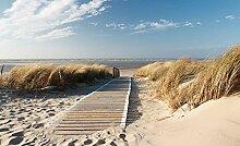 Tapeto Fototapete - Weg Strand Natur - Vlies 104 x