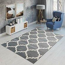 TAPISO Canvas Teppich Modern Kurzflor Designer
