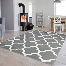 Tapiso Collection Luxury Teppich für Wohnzimmer,